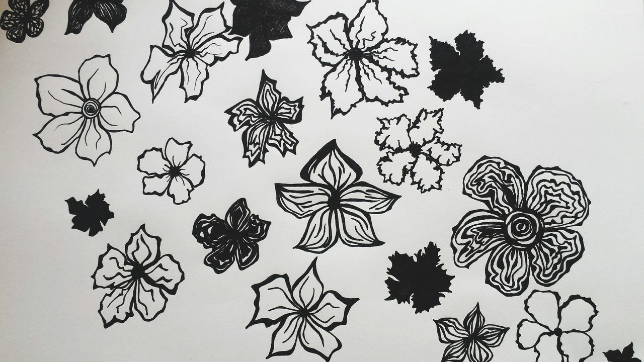 Sketch Ink No People Flowers Drawing Drawing - Art Product Doodle Doodleart