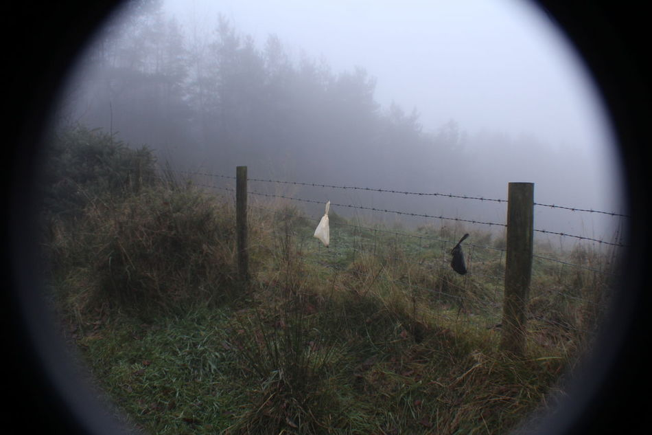 Black Bag White Bag Dog Poo Filthy Dog Fence Security Tree Fog Protection No People Military Nature Outdoors Day not good.