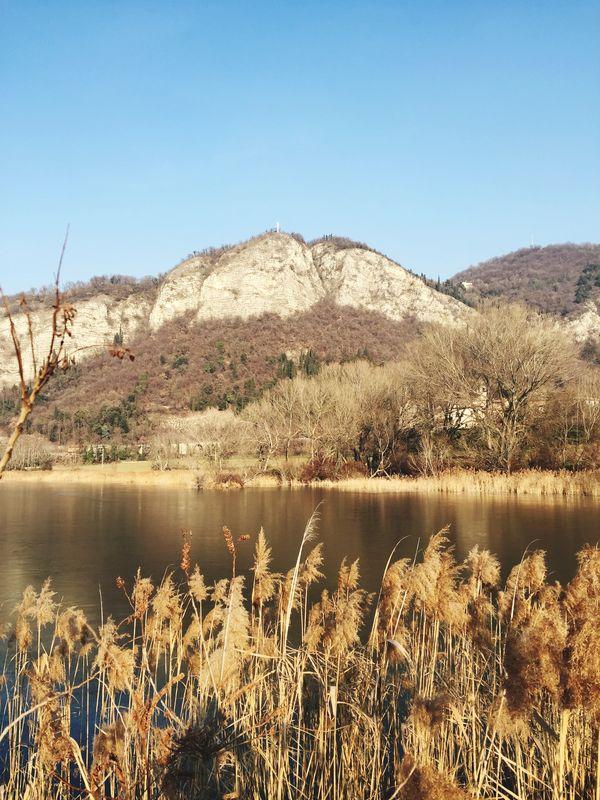 Taking Photos Winter Landscape Nature Naturalreserve