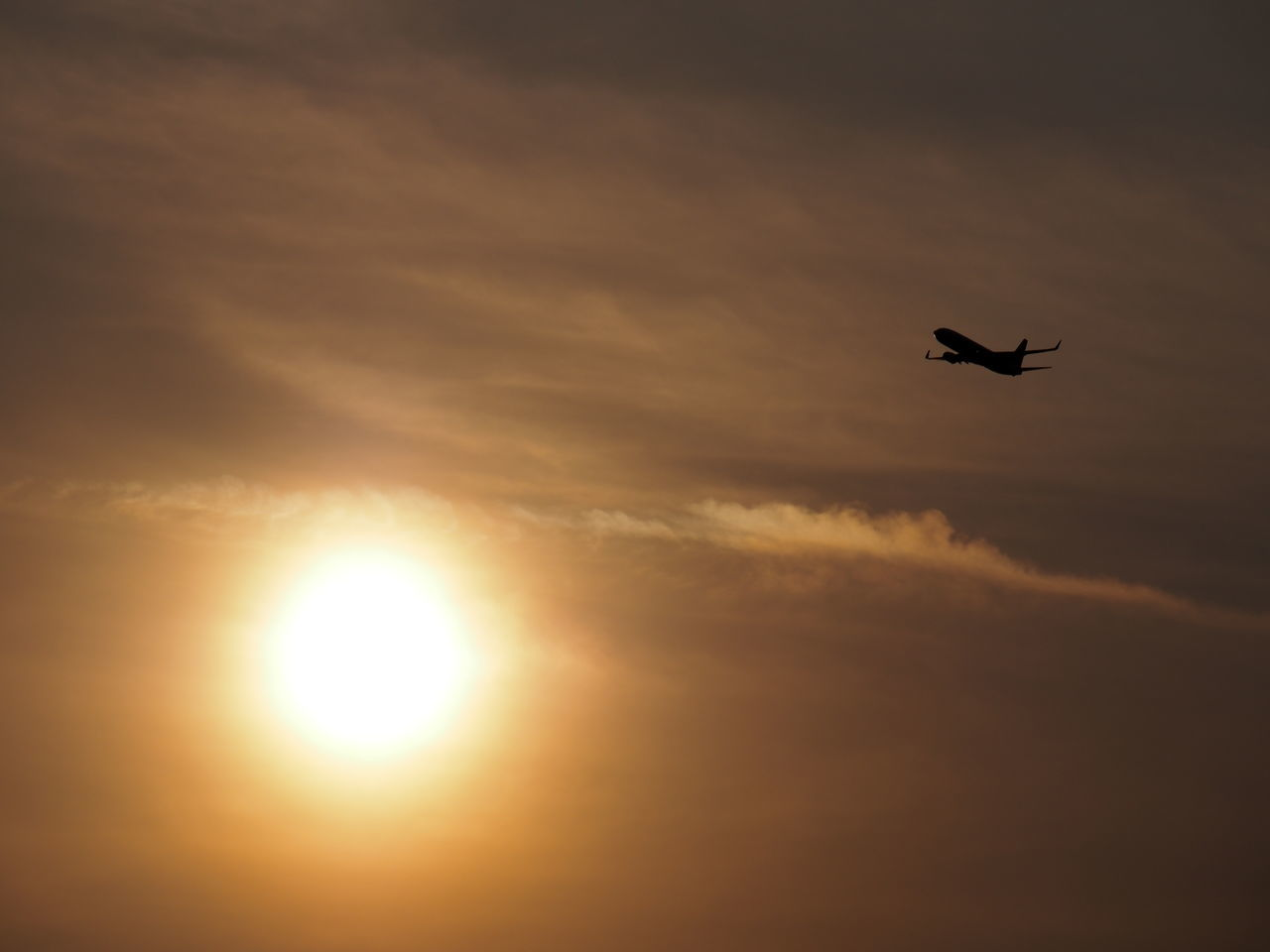 sunset, flying, sky, sun, silhouette, cloud - sky, nature, beauty in nature, mid-air, no people, outdoors, low angle view, sunlight, scenics, airplane, bird, animal themes, day