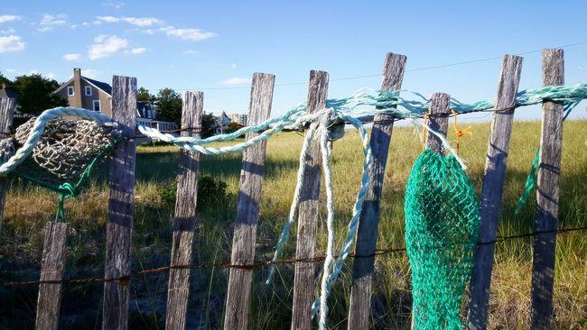 Reclaimed Fishing Nets Washed Up On Beach Beach Access Maine The Way Life Should Be Beach Walk Enjoying Life Relaxing Place S6 Maine Photography EyeEm Gallery EyeEm Beauty In Nature EyeEm Best Shots - Nature Eyeemphotography Showcase June Opme⛱ EyeEm Best Shots Maine Photography 🌲