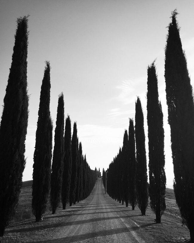 EyeEm Best Shots - Black + White Blackandwhite Monochrome Streetphotography Tuscany Shootermag