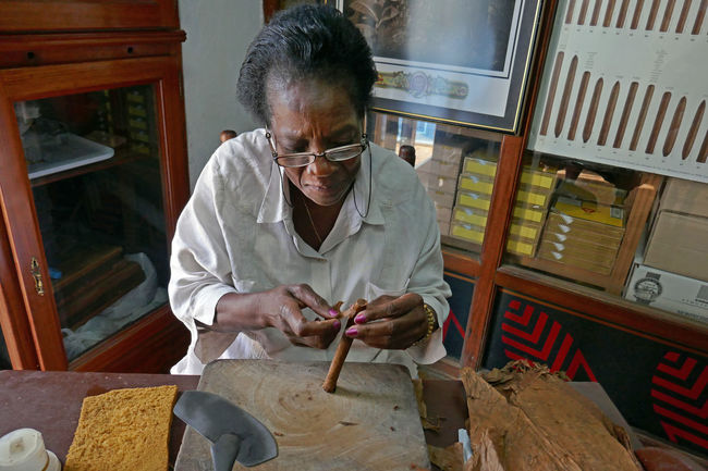 One of the only female cigar rollers in Havana, Cuba. Cigar Cigar Roller Concentration Craft Havana Havana Cuba Labor Of Love Lifestyles Sitting