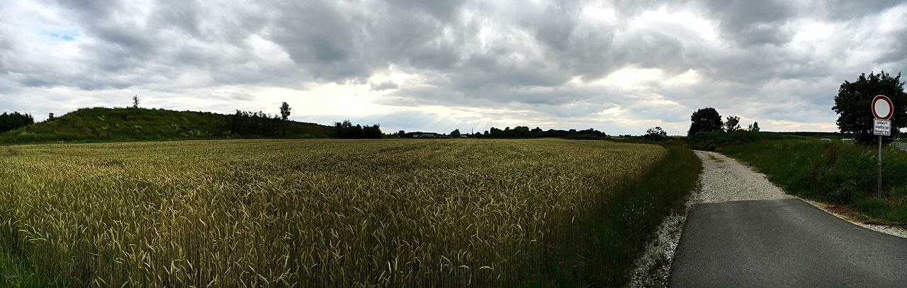 Panorama Landscape Corn Field Field Sun Rays Street Evening No People Countryside Sky Clouds Concrete Flat Land