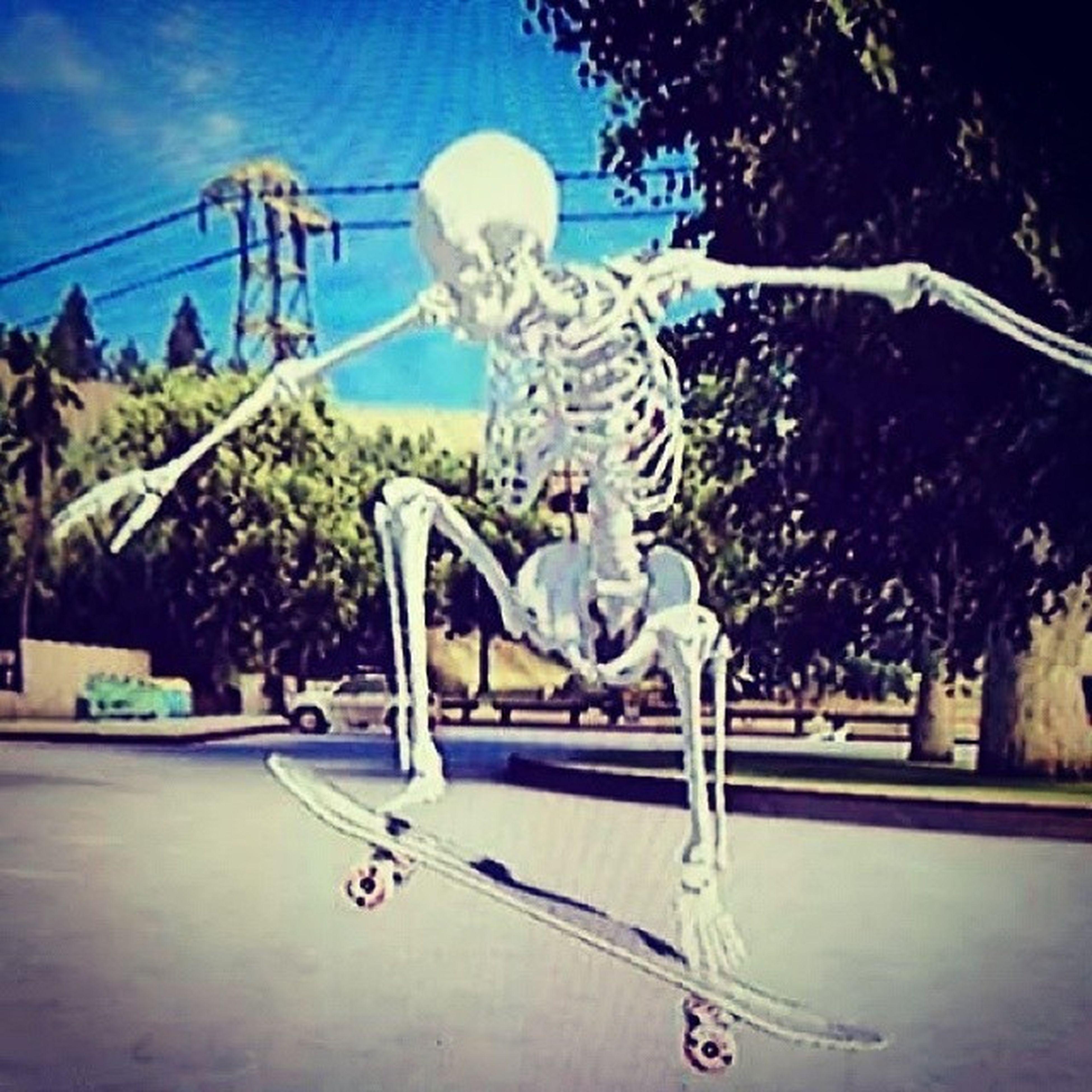 Skull SkaBoard