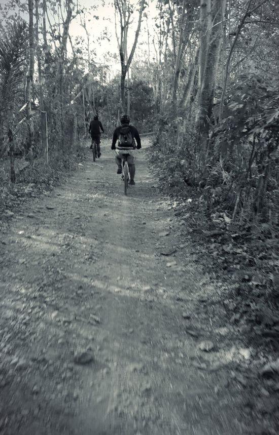Old path leads to not too old fun... Mountainbikelife Enduroforlife Trinx Haro Bikes Sixpack RDFBikeshop Enduromtb