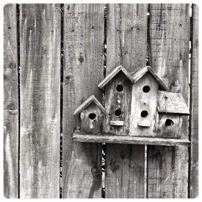 Living, Back Garden Highland Birdhouse Black & White Garden
