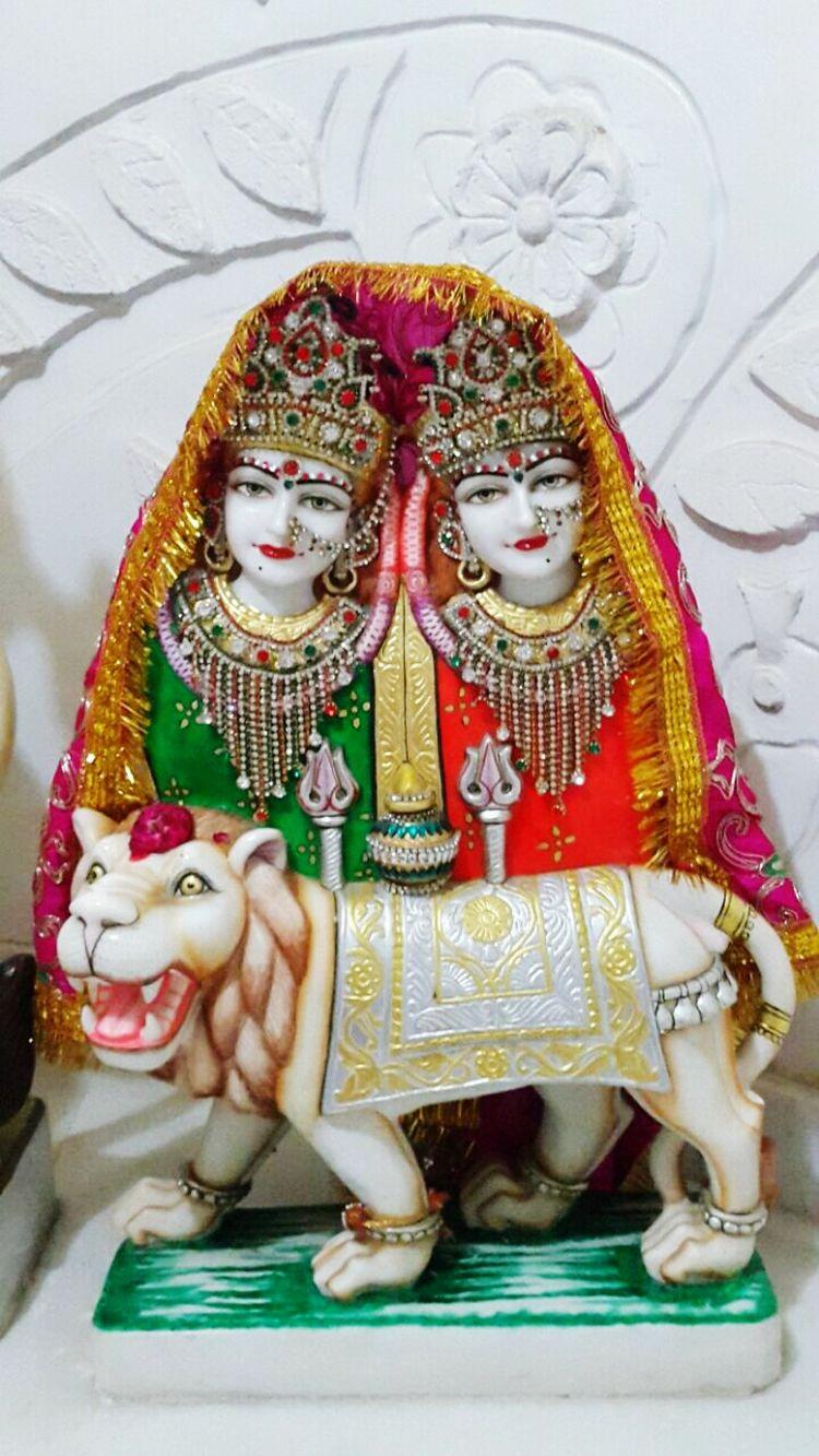 Varaidhamgoldentemple Goddess Occasion Festival Pink Chamunda Mata India Gujarat Palanpur Deesahighway
