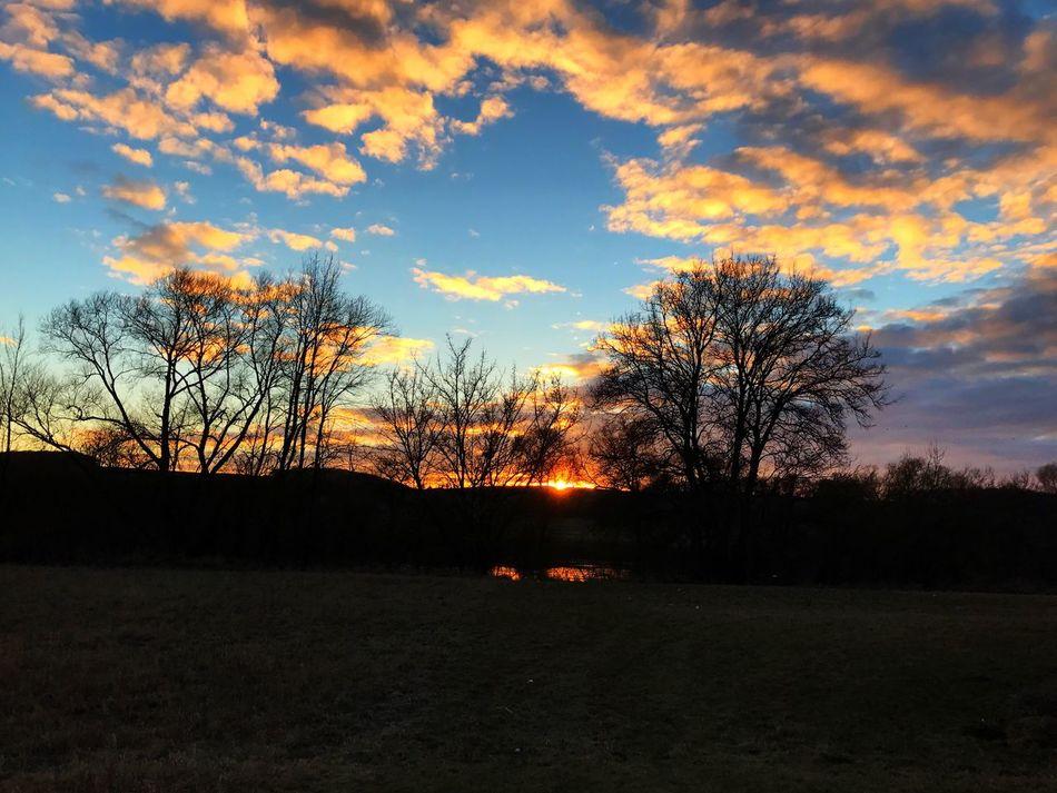 Outdoorphotography #nature #natureporn #naturelove #natureelite #naturelover #sunrise_sunsets_aroundworld #fireinthesky #outdoorlovers #outdoorphotoshoot #nature_brilliance #naturephotography #bestoftheday