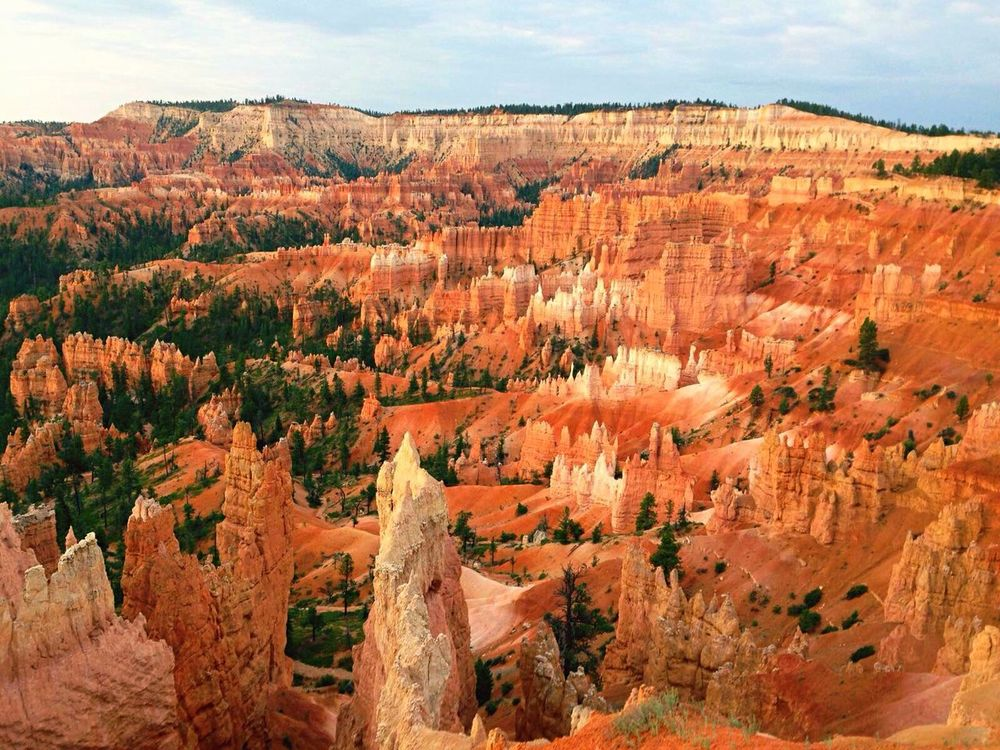 Rock Formation Geology Landscape Beauty In Nature Nature National Park Bryce Canyon National Park Canon 7D EyeEm Taking Photos Summer View Mountains America