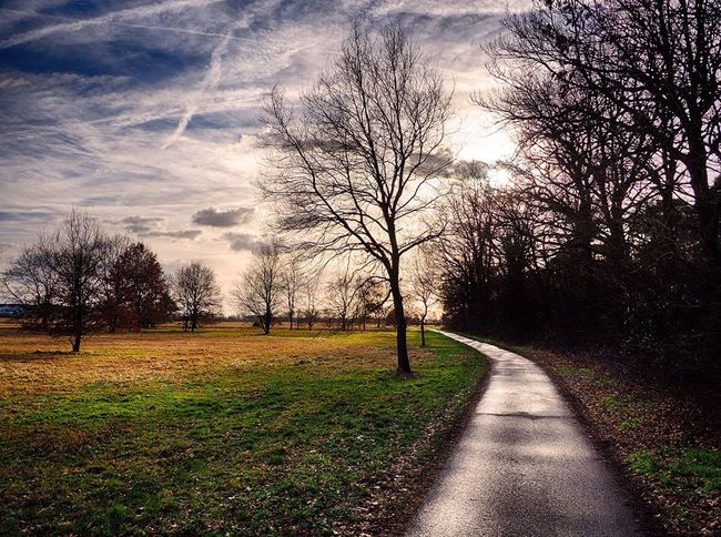 EyeEm Best Shots - Nature EyeEm Nature Lover Germany Awesome_nature_shots Nature_collection Streamzoofamily Karlsruhe Photo