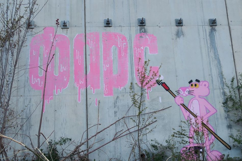 Art Is Everywhere Pink Panther Pink Panther On The Road Mouse🐹 Fars