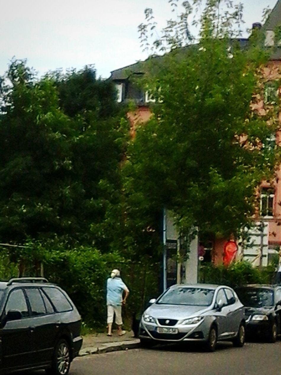 Impression 01159 Dresden MohornerStrasse im SilliconenSaxony