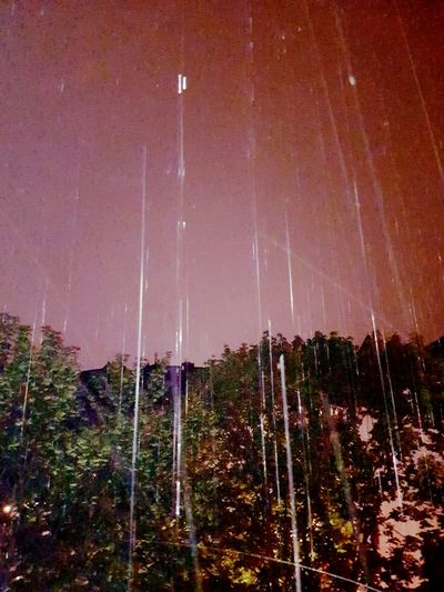 Rain Summer Rain Night Rain The Essence Of Summer- 2016 EyeEm Awards The Essence Of Summer Drops Of Rain Drops From My Point Of View From My Window Minimalism Essence Of Summer Light In The Darkness Night Photography Night View Night Trees Trees And Sky Raindrops Rain Sky Nature Rain Drop Taking Photos GalaxyS7Edge
