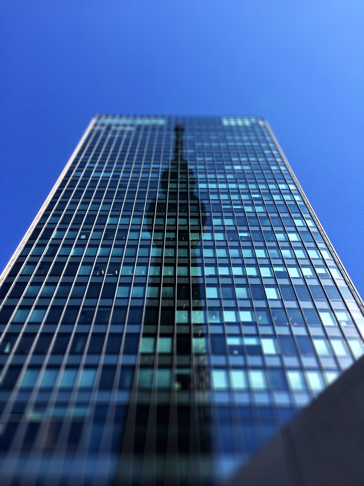スカイツリー Tokyo Skytree を 昼 に見上げる。
