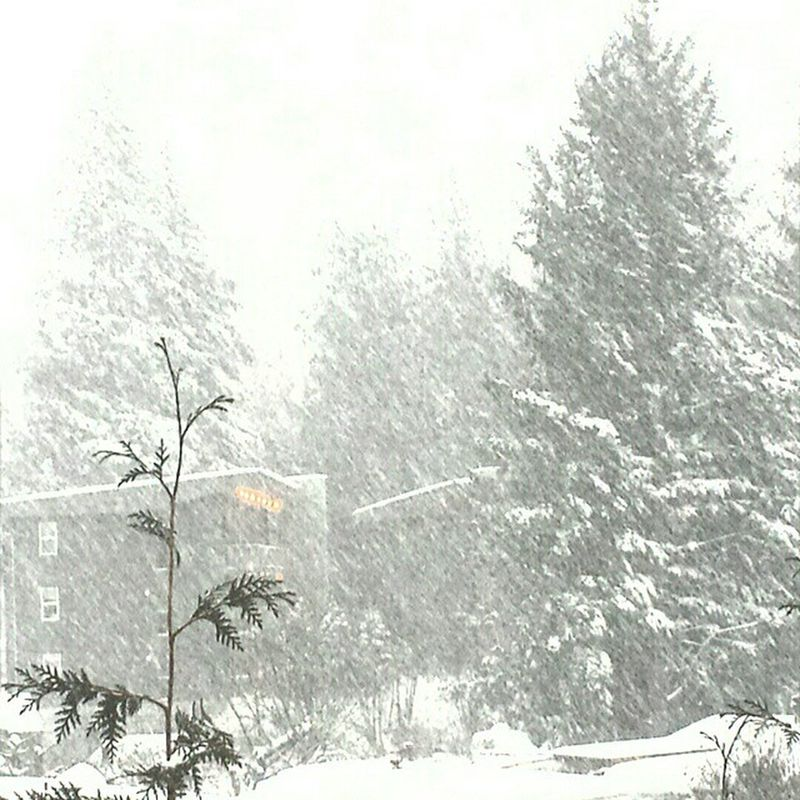 It's a Winterwonderland out there...love it! Whiteout Squamish Seatosky Winter Bcstorm Letitsnow