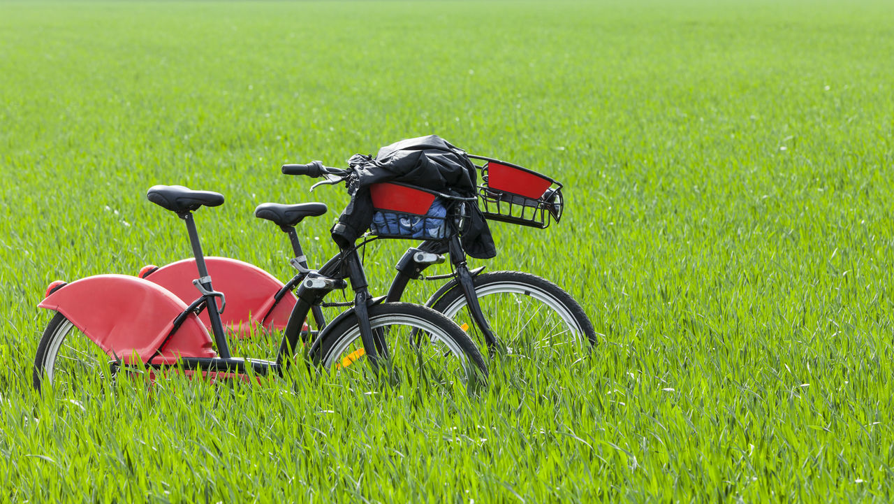 Two bicycles in a green field. Bicycle Bicycles Bicycle Trip Two Bicycles Outdoors Field Green Field Urban Transport Leisure Time Couple Nature Together Togetherness Exercise Time Healthy Lifestyle