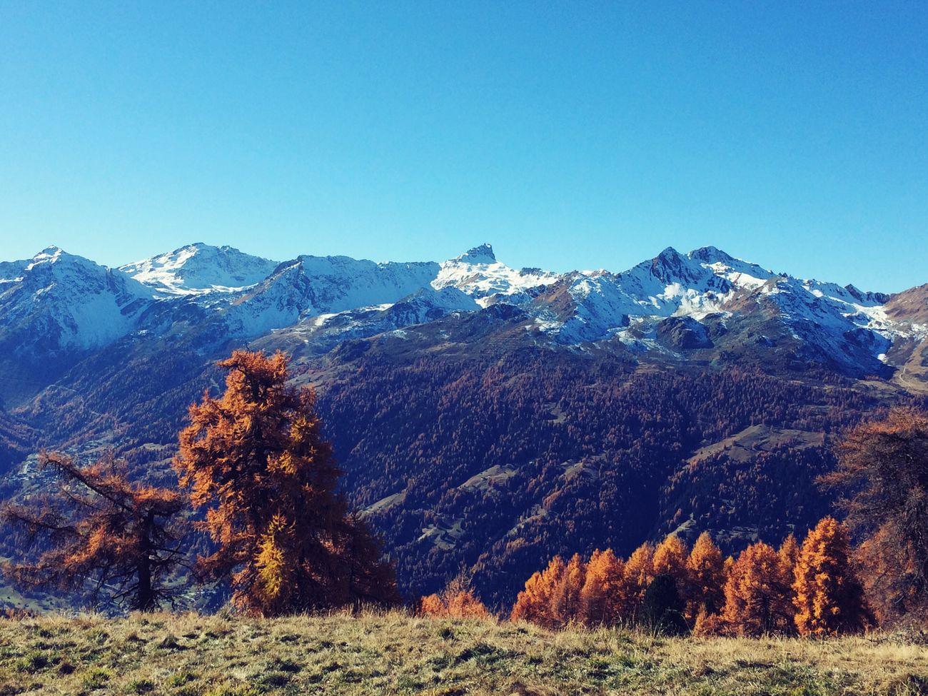 Swiss Switzerland St-Luc Mountains Nature Open Edit Beautiful Green