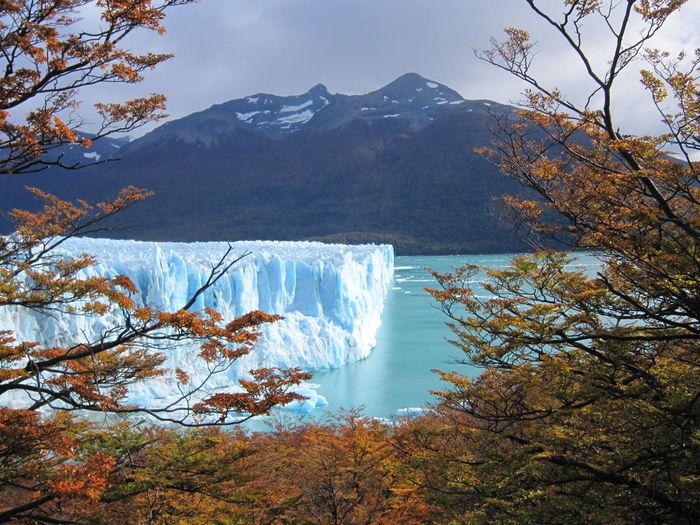 #NoFilter #argentina #colours #elcalafate #glacier #ice #light #nofiltertravel #peritomoreno #travel #travelphotography #trees