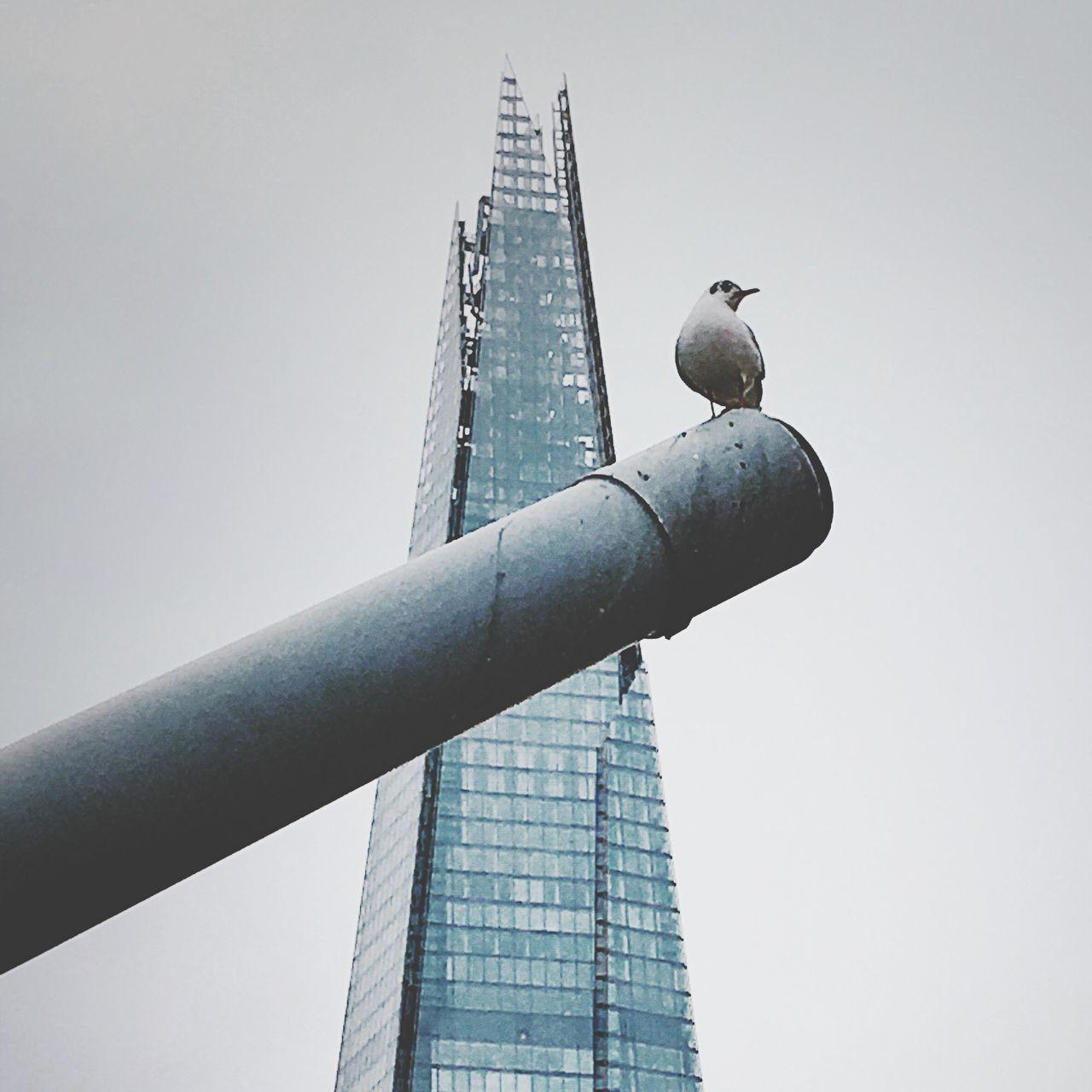Past, present, peace. Tower Building Exterior City First Eyeem Photo The Architect - 2017 EyeEm Awards EyeEmNewHere