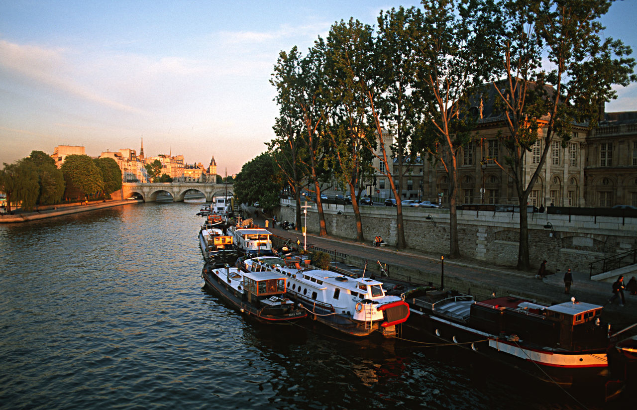 Boats In The River Seine Bridge - Man Made Structure City Cityscape Evening Atmosphere Mode Of Transport Nautical Vessel No People Outdoors Paris In The Evening River Sailing The River Sein Transportation Travel Destinations Tree Urban Idyllyic Water