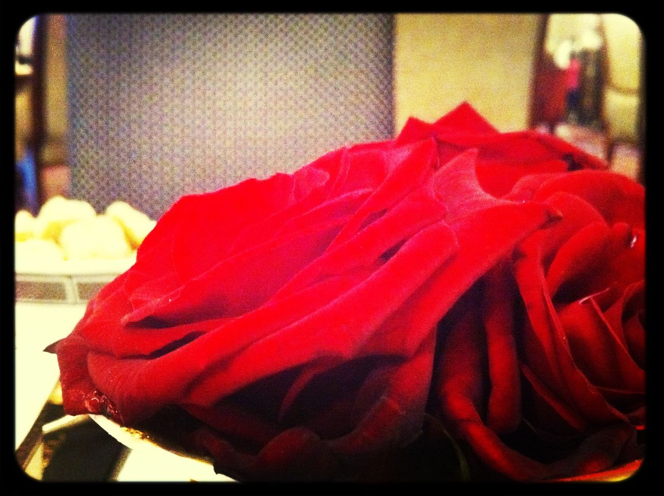 coffee and roses at The Langham Coffee And Roses