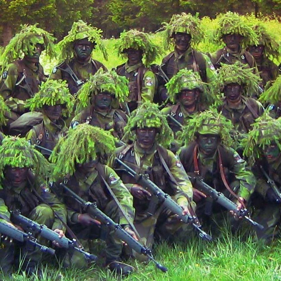 Military memorys Hugging A Tree Military Self Portrait Fallskärmsjägare Excercising Green Green Eyes Green Green Green!  People People Photography #ak