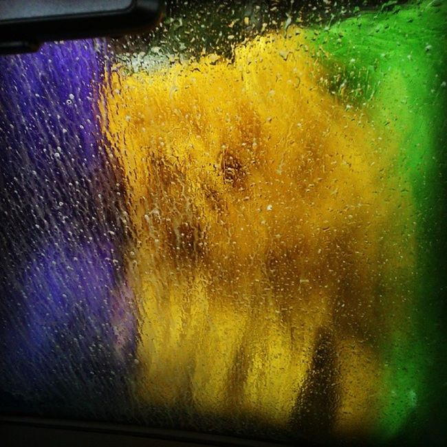 BlauSchlitten goes for his first Carwash (with us inside...)