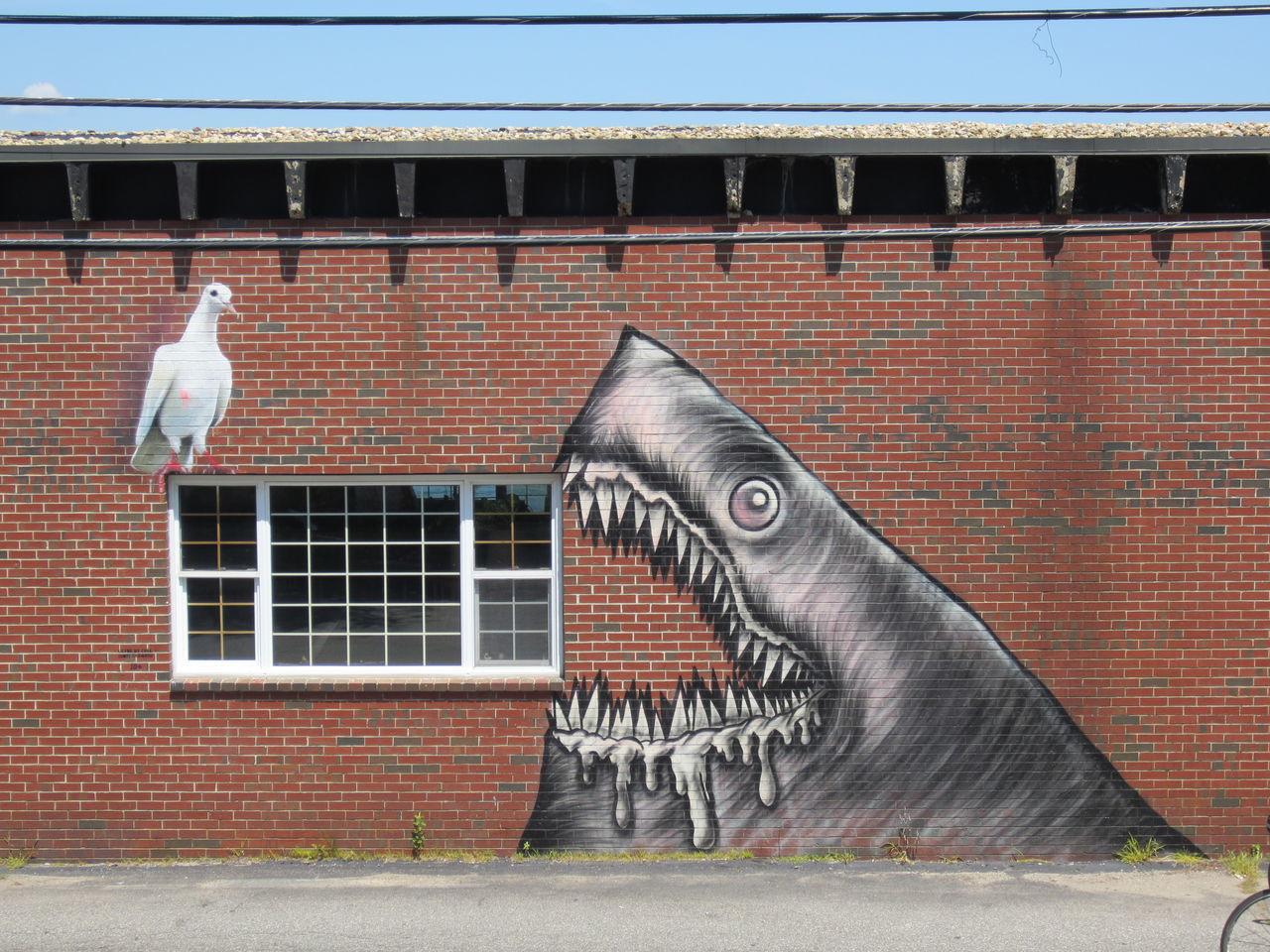 Street Art USA