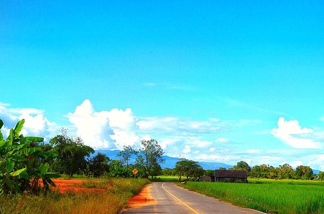 Blue Cloud Countryside Day Diminishing Perspective Footpath Grass Green Landscape Long Narrow Nature Outdoors Plant Remote Road Scenics Sky Solitude Surface Level The Way Forward Tranquil Scene Tranquility Tree Vanishing Point
