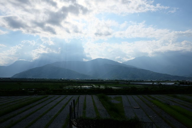 Agriculture Beauty In Nature Canal Cloud - Sky Cloudy Cultivated Land Day Farm Field Footpath Growth In Front Of Landscape Mountain Mountain Range Nature Non-urban Scene Outdoors Rural Scene Scenics Sky Taitung,taiwan Tranquil Scene Tranquility Water