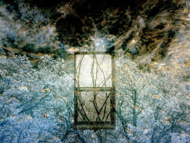 Night Window Through Daylight Window Window Suspended In Sky Flowering Trees Spring Blue And Gold Sky Happy Emotive Positive Mysterious The Innovator