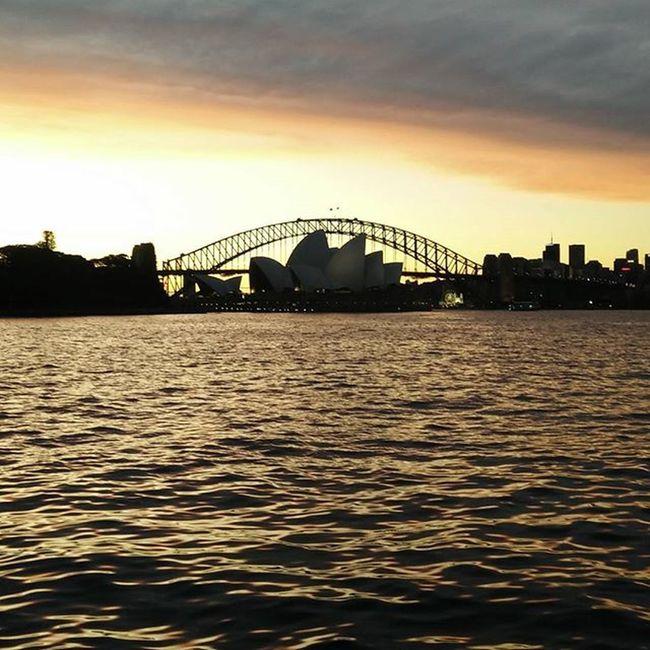Sydney Operahousesydney Mrsmacquarieschair Crewlife Layover Beautiful Sunset
