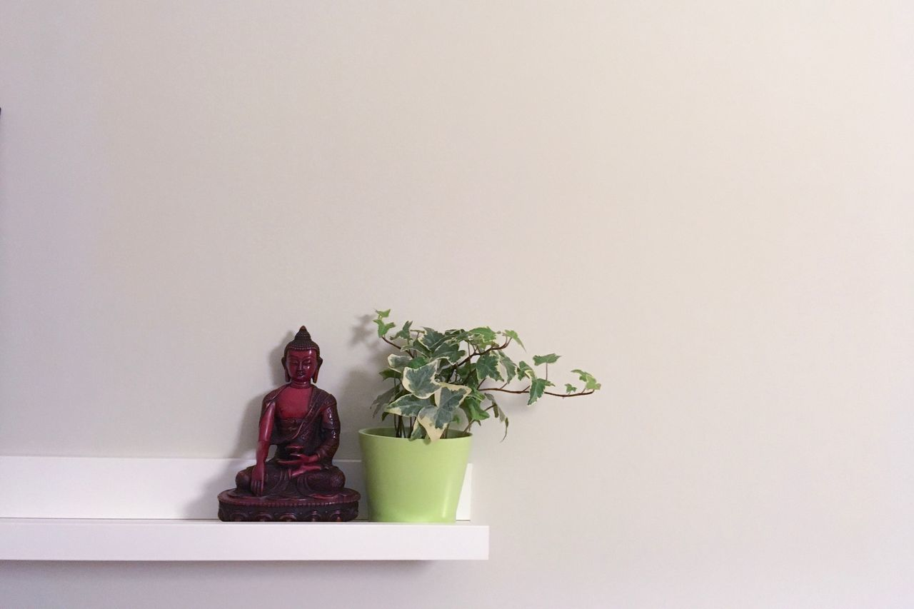 copy space, studio shot, white background, no people, figurine, plant, indoors, growth, statue, sculpture, flower, close-up, freshness, nature, day