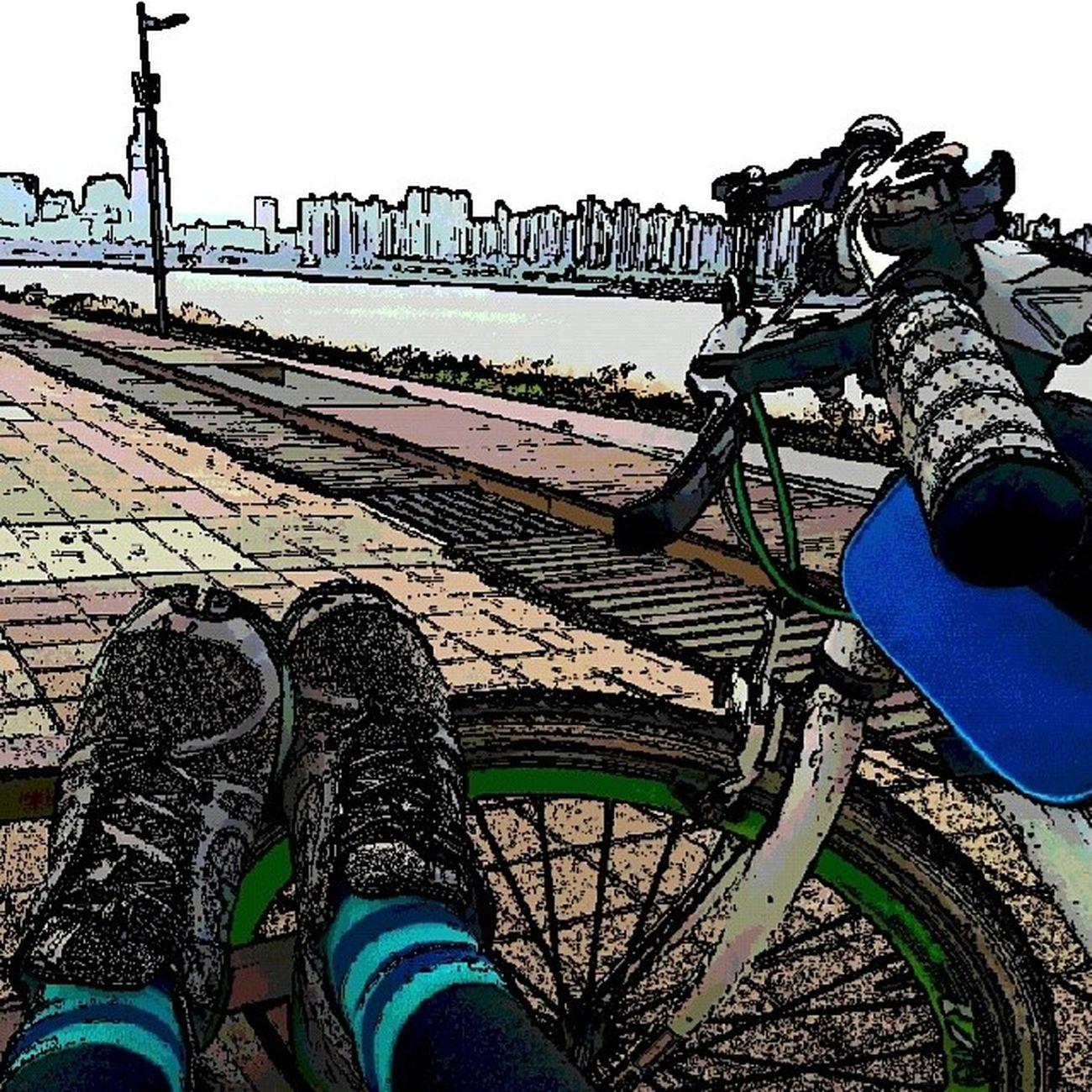 한강 뚝섬공원 자전거 라이딩