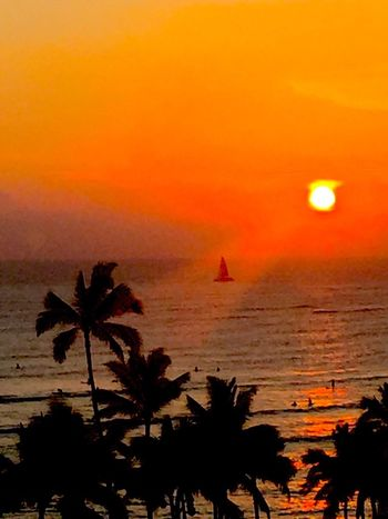 Pacific Ocean Sky Pacific Sky Pacific Pacific Ocean View Sunset Orange Color Silhouette Sky Sun Water Horizon Over Water No People Palm Tree Beach Sailboat Second Acts Island Of Oahu, Hawaii Perspectives On Nature Oahu / Hawaii An Eye For Travel