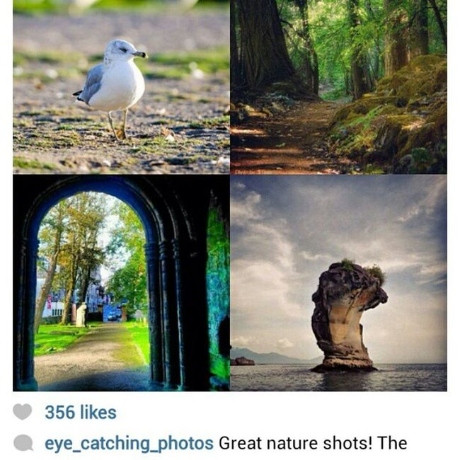'One of my pics (Bottom left) has been chosen for a feature from @eye_catching_photos Thankyou lots' Feature Dunfermline Abbey Doorway arched Scotland igaddict Igers igshots igdaily igtube iphonesia photooftheday instamood instagrammers instagood Webstagram