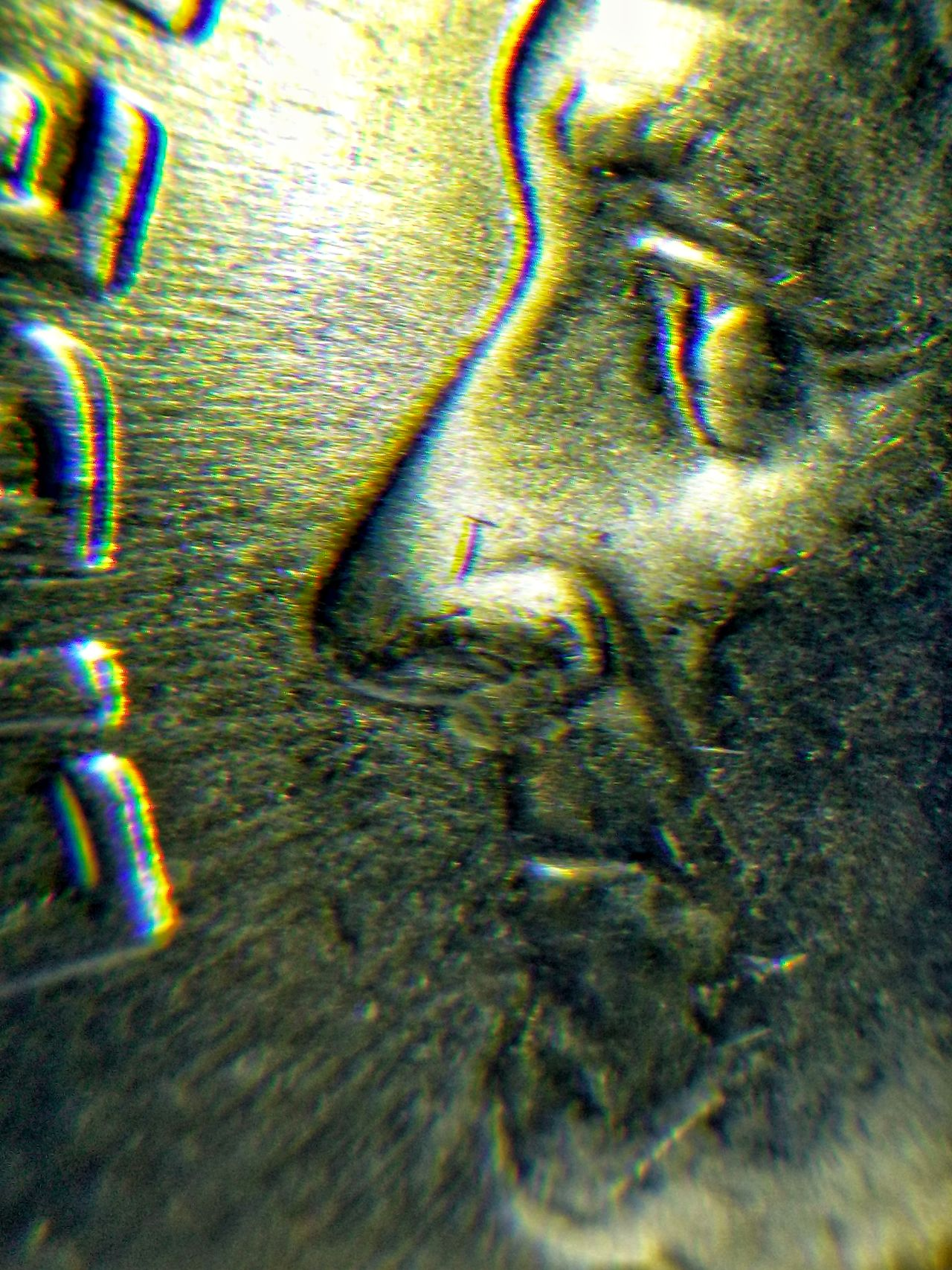 The Portrait of Roosevelt President Coin America USA Metal Close-up Microscope EyeEmNewHere EyeEm Best Shots Faces Of The Money Under The Microscope