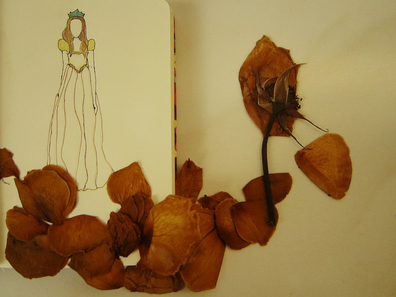 She considered herself a dried withered rose. A rose that has no fragrant. A rose that has no use. But she overlooked something important fact. She is an art. Sketch Art Roses Rose Petals Dried Roses Dried Rose Sketch Pressed Flowers Vintage Style Brown Solitude Moleskine Moleskineart Moleskindrawing