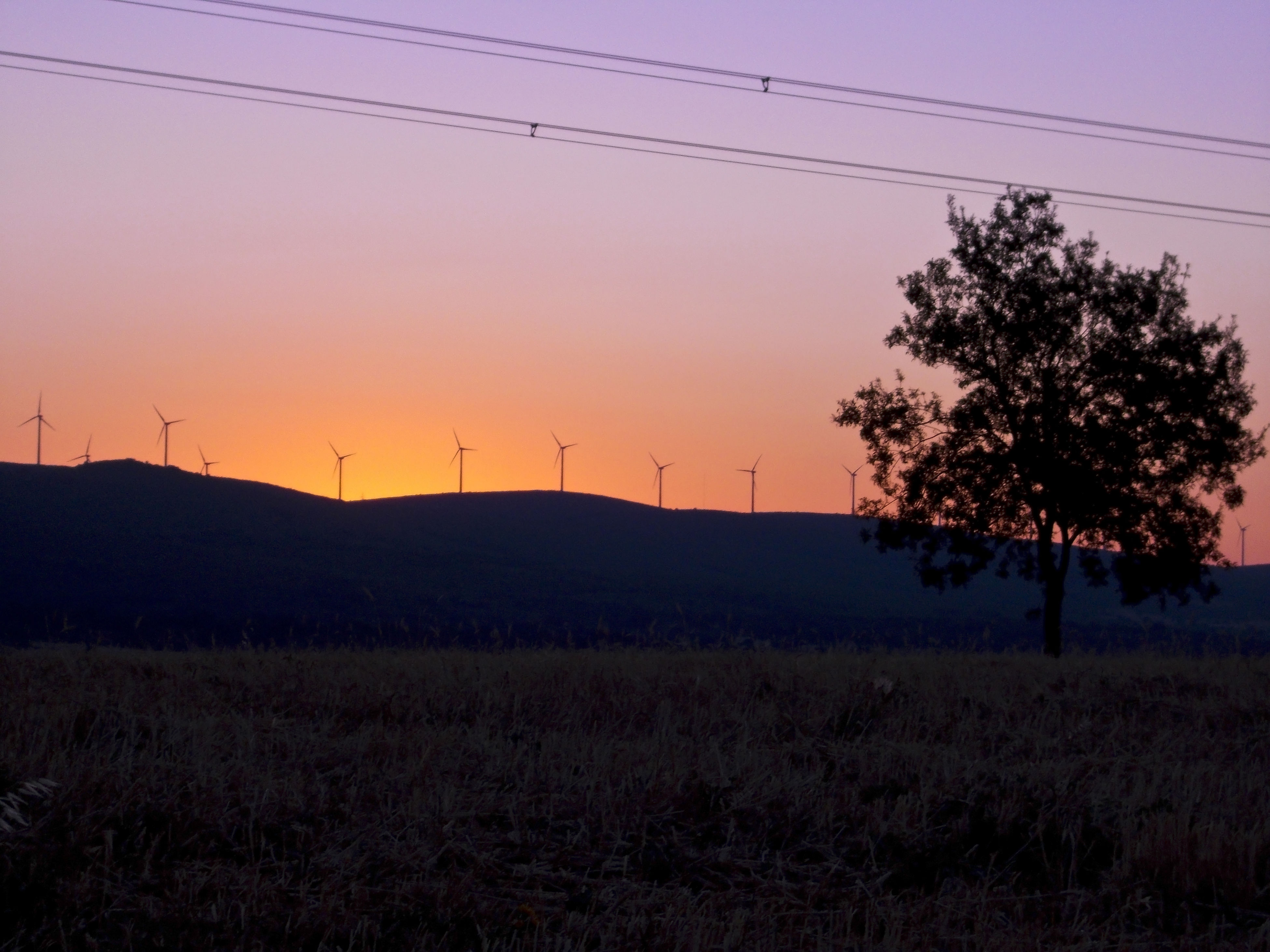 electricity pylon, power line, sunset, landscape, fuel and power generation, electricity, power supply, tranquility, silhouette, tranquil scene, field, clear sky, scenics, technology, nature, beauty in nature, cable, connection, sky, rural scene