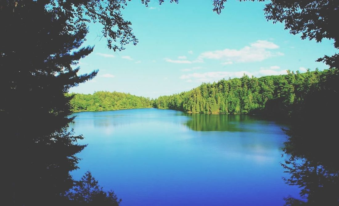 Tree Water Blue Outdoors Tranquility No People Nature Lake Sky Beauty In Nature Day Scenics Tranquil Scene Plant Canada Gatineau Park Pink Lake