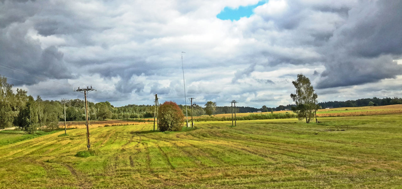 Agriculture Baltic Countries Beauty In Nature Cloud - Sky Day Farm Field Fro The Window Of A Moving Ca Grass Green Color Landscape Nature No People Outdoors Rural Scene Scenics Sky Tranquil Scene Tranquility Tree