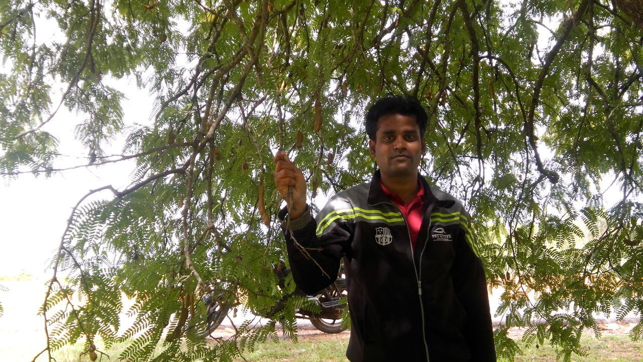 tree, real people, one person, gesturing, young adult, low angle view, front view, standing, lifestyles, casual clothing, looking at camera, outdoors, day, young men, leisure activity, young women, nature, growth, happiness, smiling, forest, portrait, animal themes, sky, mammal, people