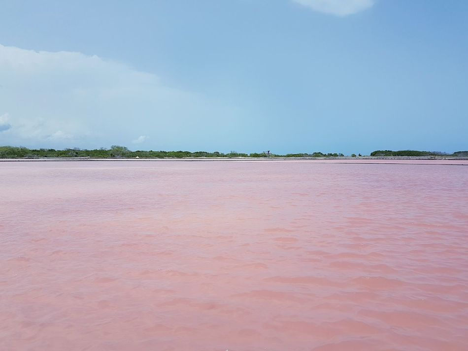 Nature Puertorico Water Paradise Clouds Pink Water