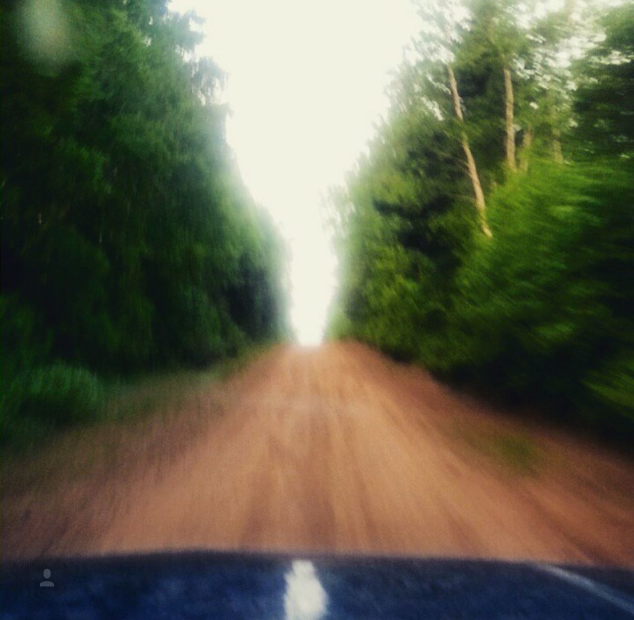 Tree Road Nature Transportation Driving The Way Forward Outdoors Day Motion Sky Moving Rippinupthebackroads