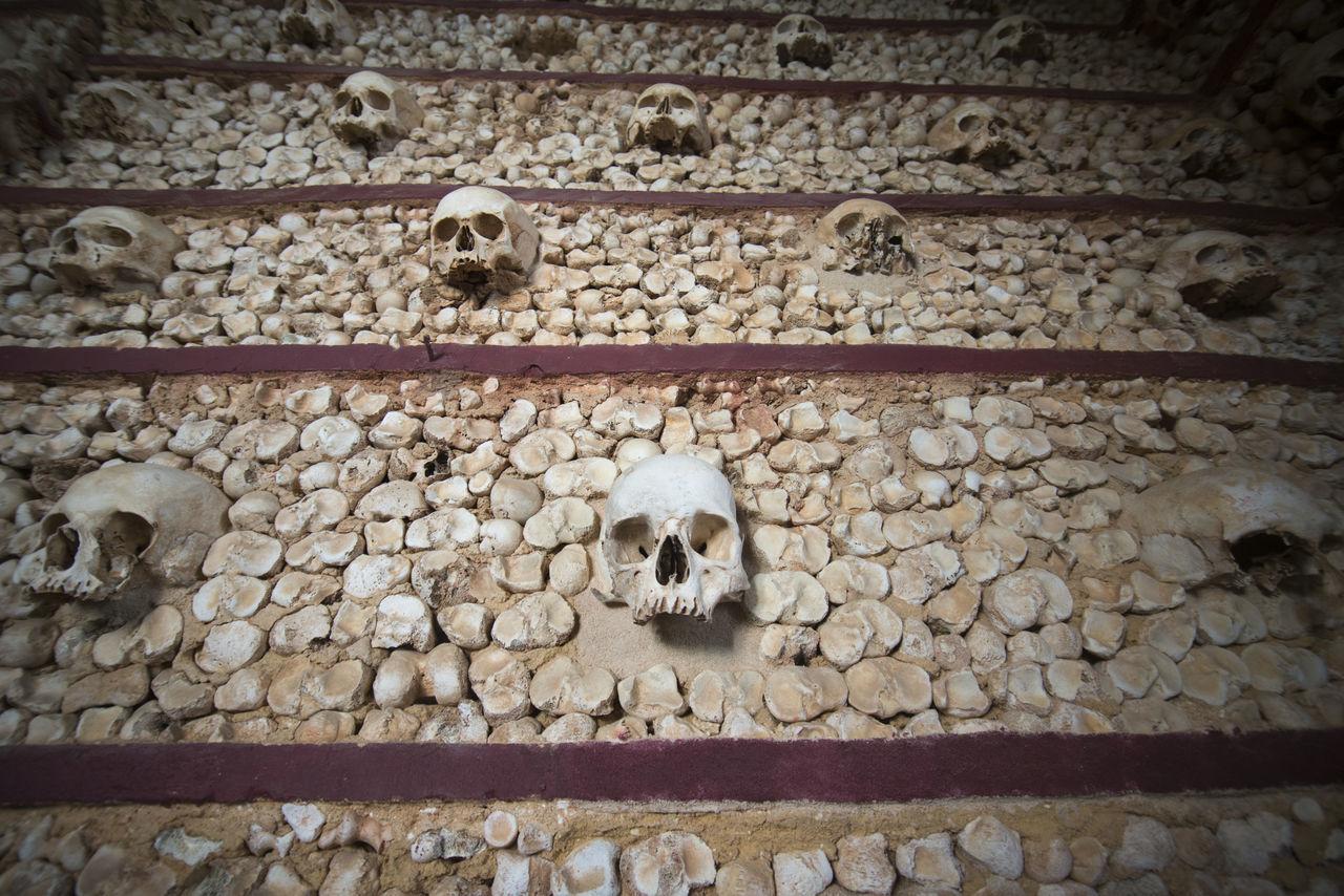 human skull, human skeleton, human bone, human body part, skull, animal skull, spooky, animal themes, built structure, architecture, outdoors, day, close-up, mammal, people