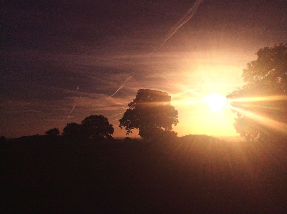 Sunrise in Essex Countryside Sunrise Nature On Your Doorstep Landscape_Collection The Photojournalist - 2015 EyeEm Awards Essex