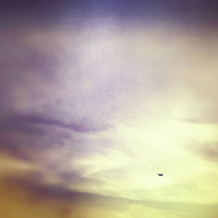 Avion Plane Far Lejos cielo sky minimal aire clean breath igers instagramers ihub instamood instagood instahub picoftheday photooftheday fotodeldia bestpicoftheday gramermex mextagram iphoneonly iphonesia iphone4s igersmania mexico lalojm1 2012