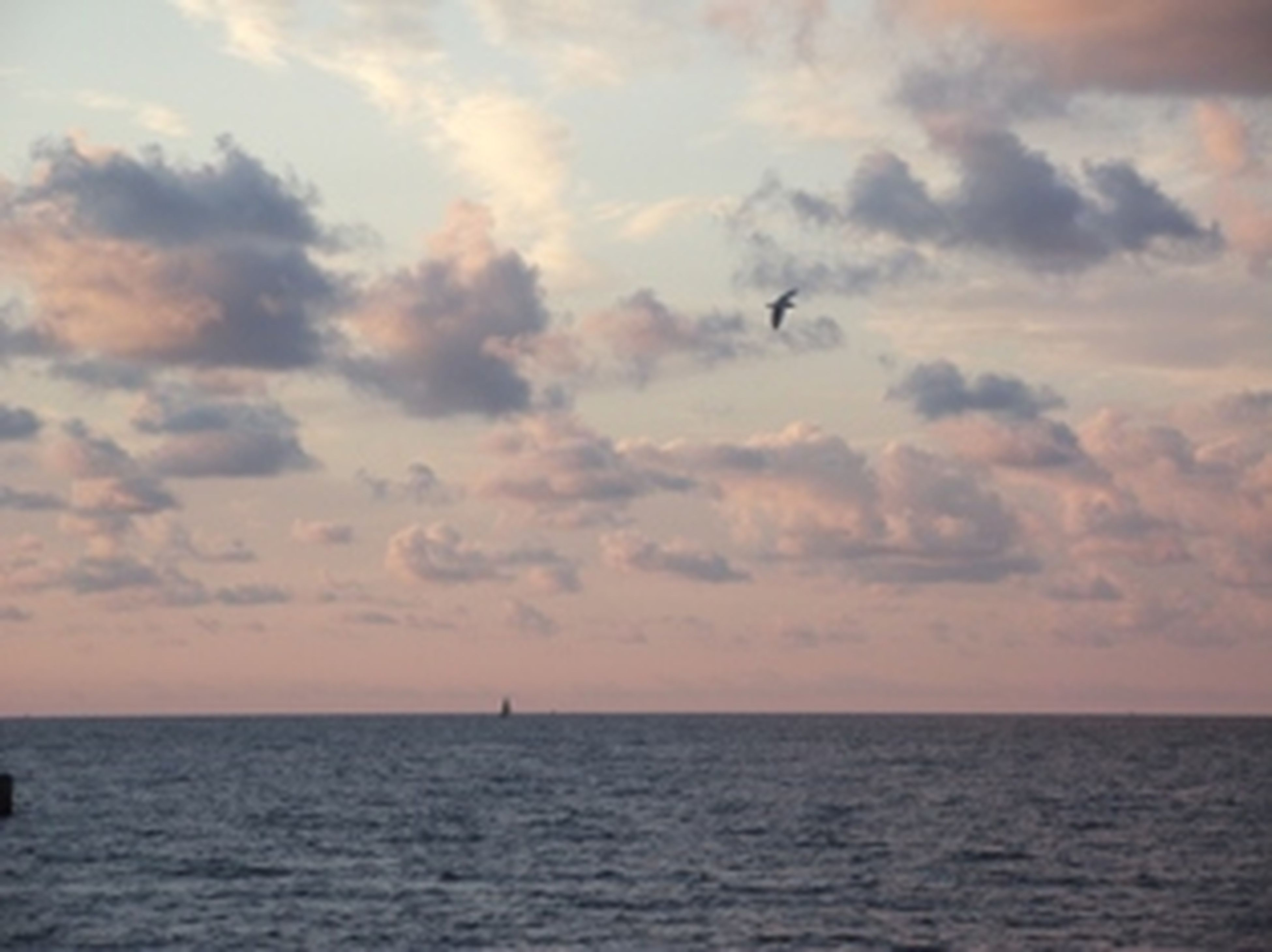 What Does Freedom Mean To You? Balticsea Poland Nofilter
