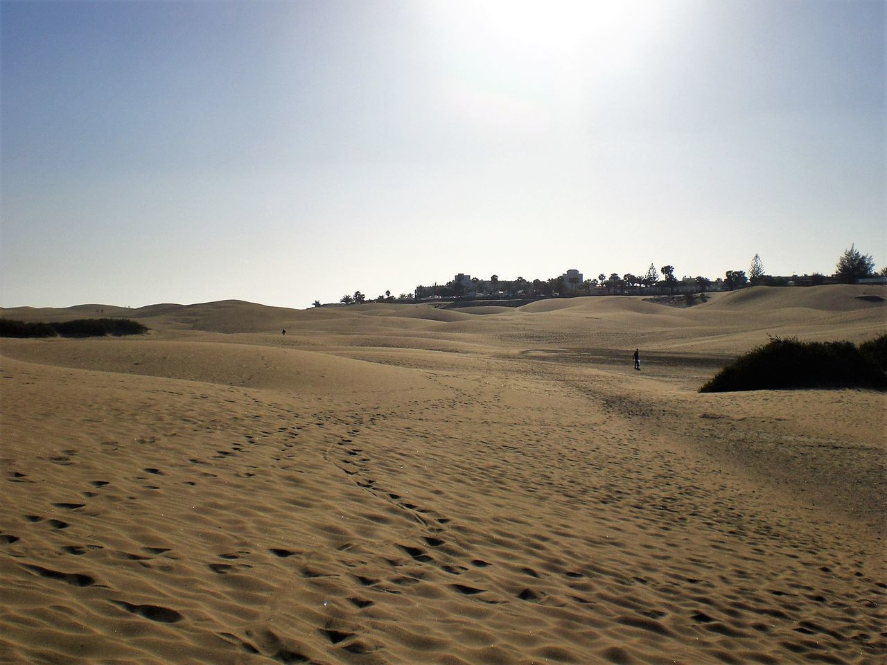 Arid Climate Beach Beauty In Nature Blue Day Desert Horizon Over Land Idyllic Landscape Nature Non-urban Scene Outdoors Remote Sand Scenics Shore Sky Tourism Tranquil Scene Tranquility Travel Destinations Gran Canaria Dunes Dunes De Maspalomas